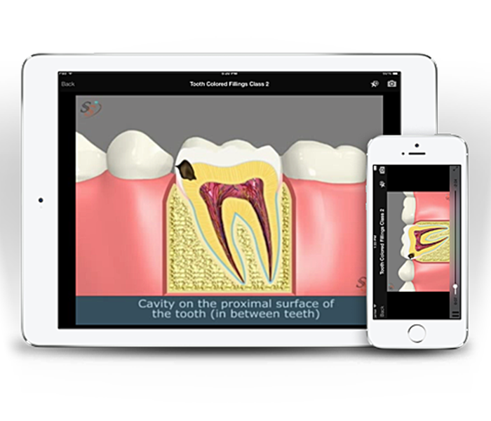 Team - Patient Education - Magic Smiles - Orthodontist in Portland, Beaverton, and Scappoose, OR